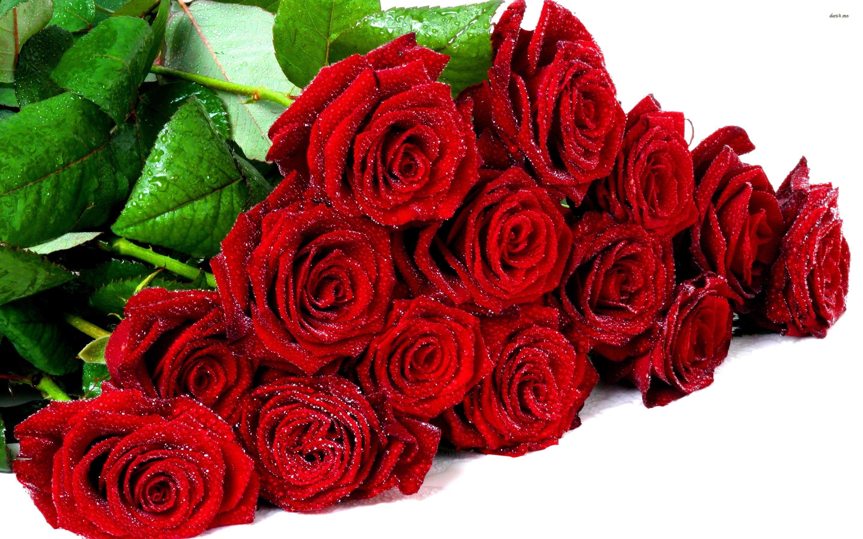 Big bouquet of roses bing images the lit art pinterest flowers big bouquet of roses bing images izmirmasajfo