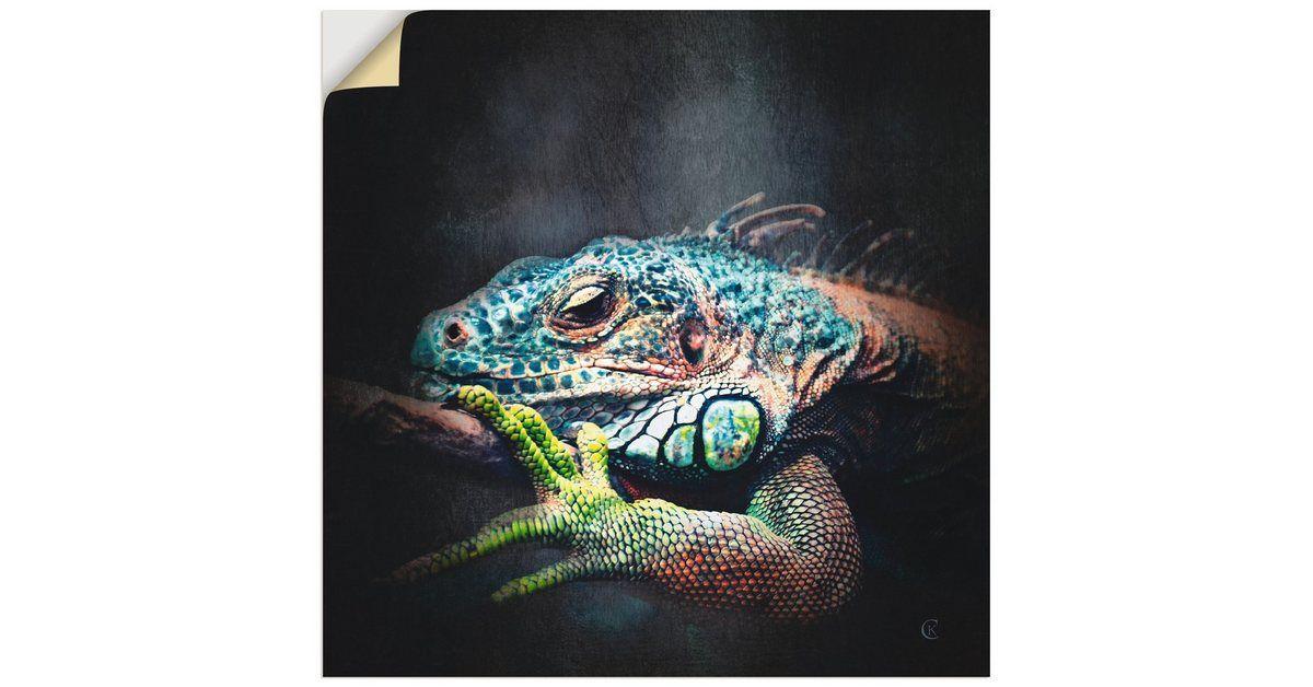 Wandfolie »Catrin Kassube: Leguan«