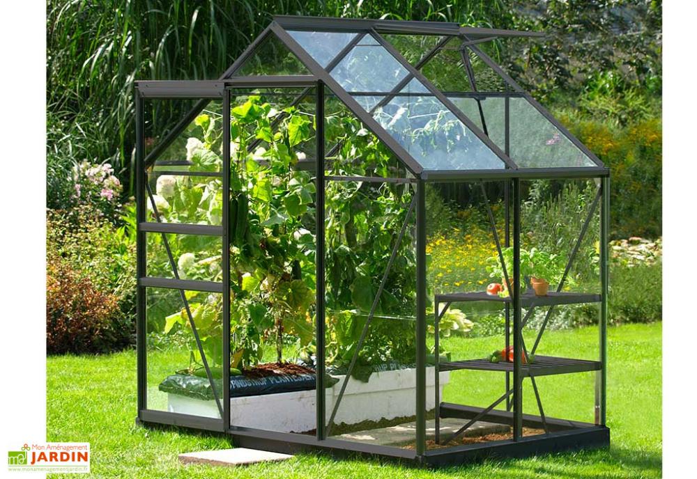 Serre De Jardin En Verre Trempe Lams 2 5 M Allium 2500 Anthracite Serre Jardin Jardins Et Petite Serre De Jardin