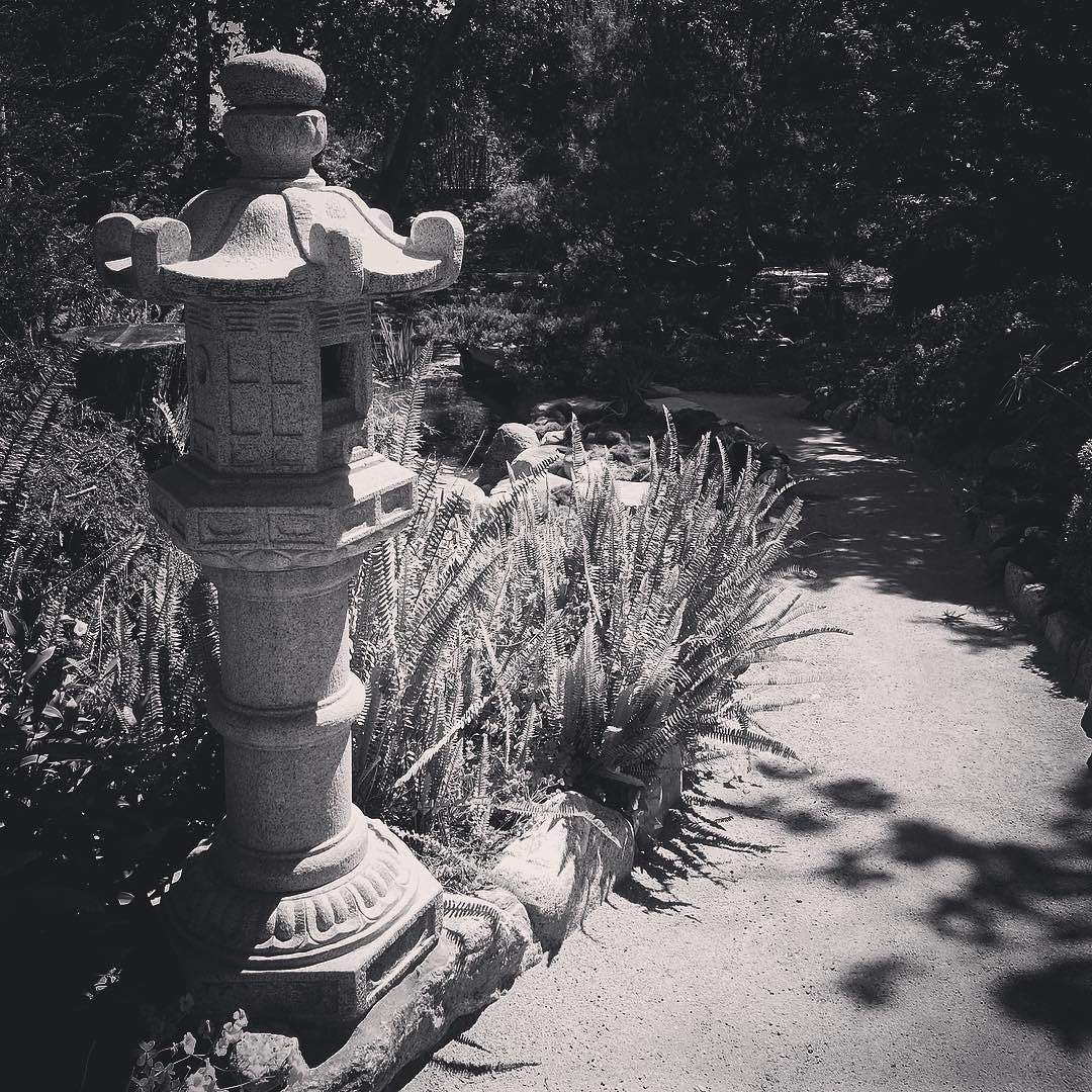 Along the garden path #garden #gardenersnotebook #japanesegarden #lantern #path #landscape #storrierstearns #storrierstearnsjapanesegarden #bw #blackandwhite #blackandwhitephotography