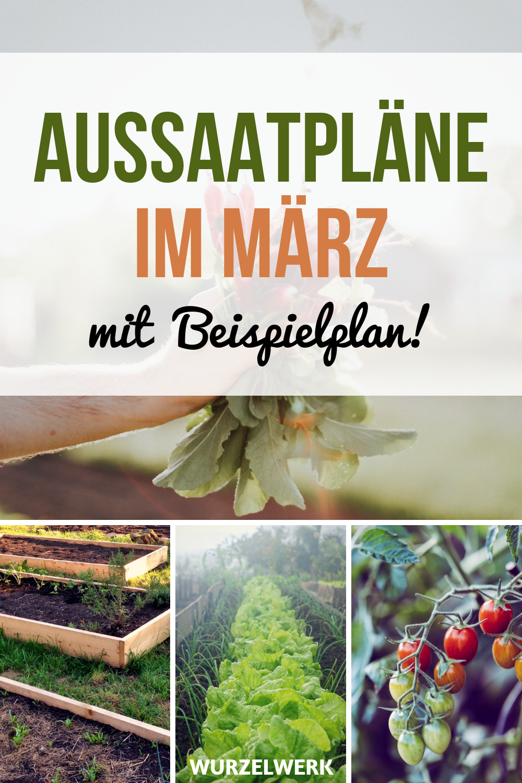 Aussaat & Pflanzen im März + Beispiel-Pflanzplan - Wurzelwerk