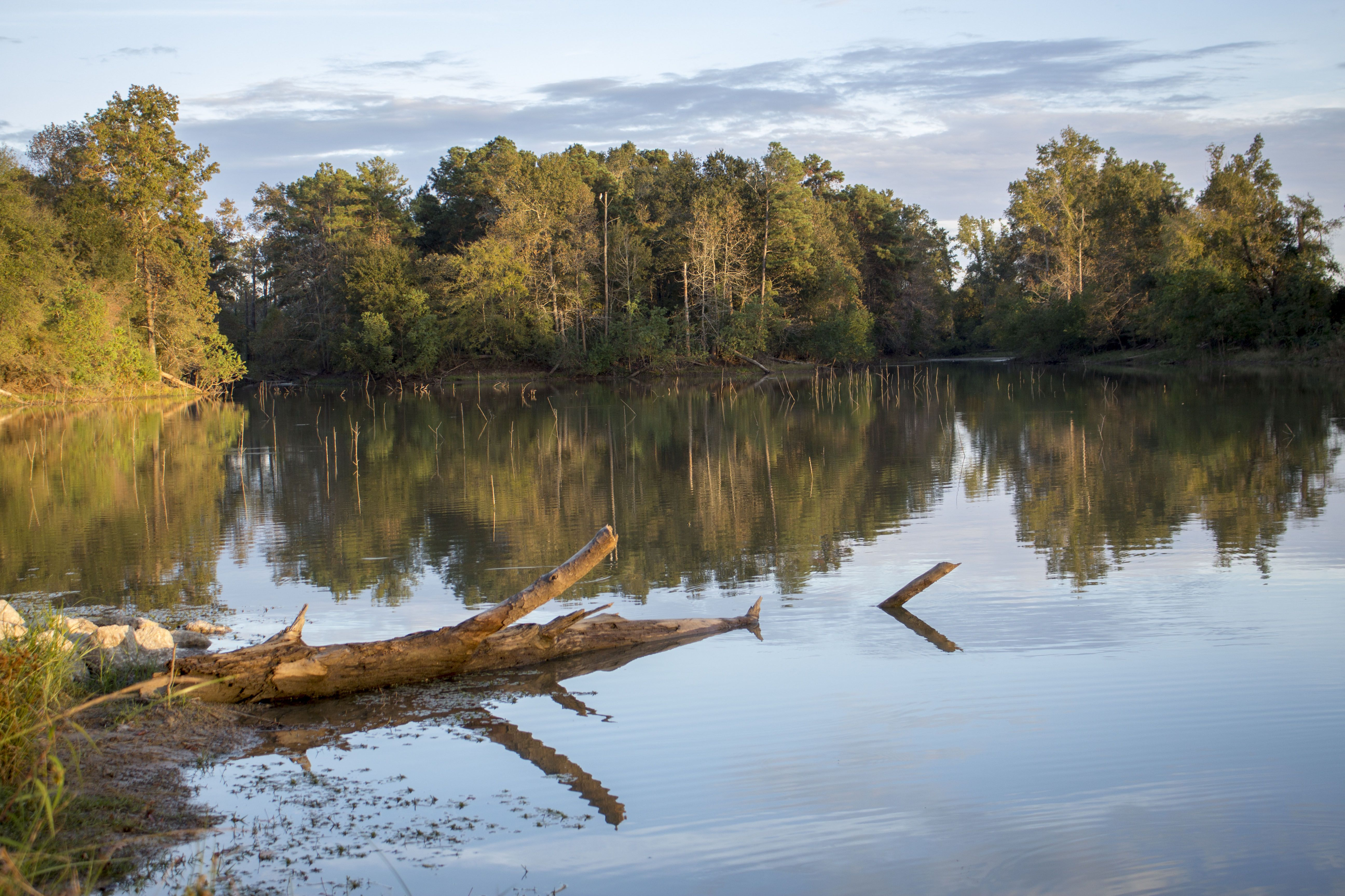 Kickerillomischer preserve 20207 chasewood park dr