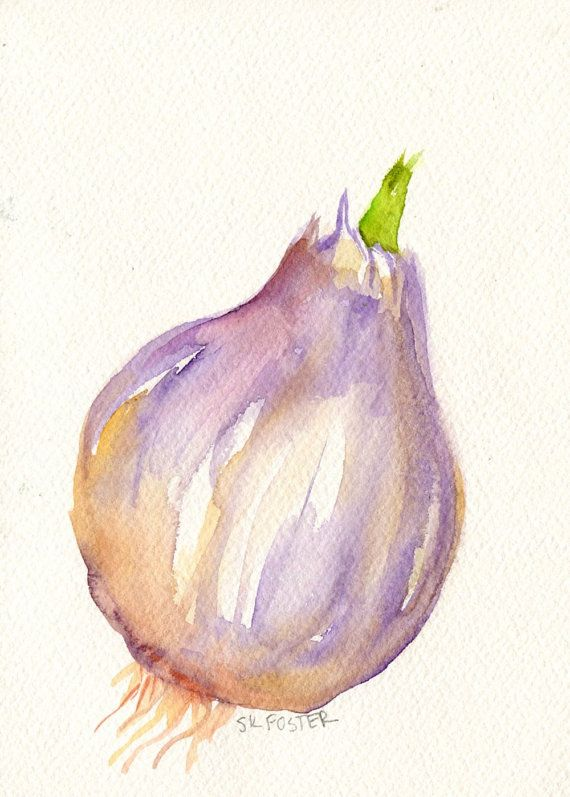 Purple Garlic Watercolor Painting Original Big By