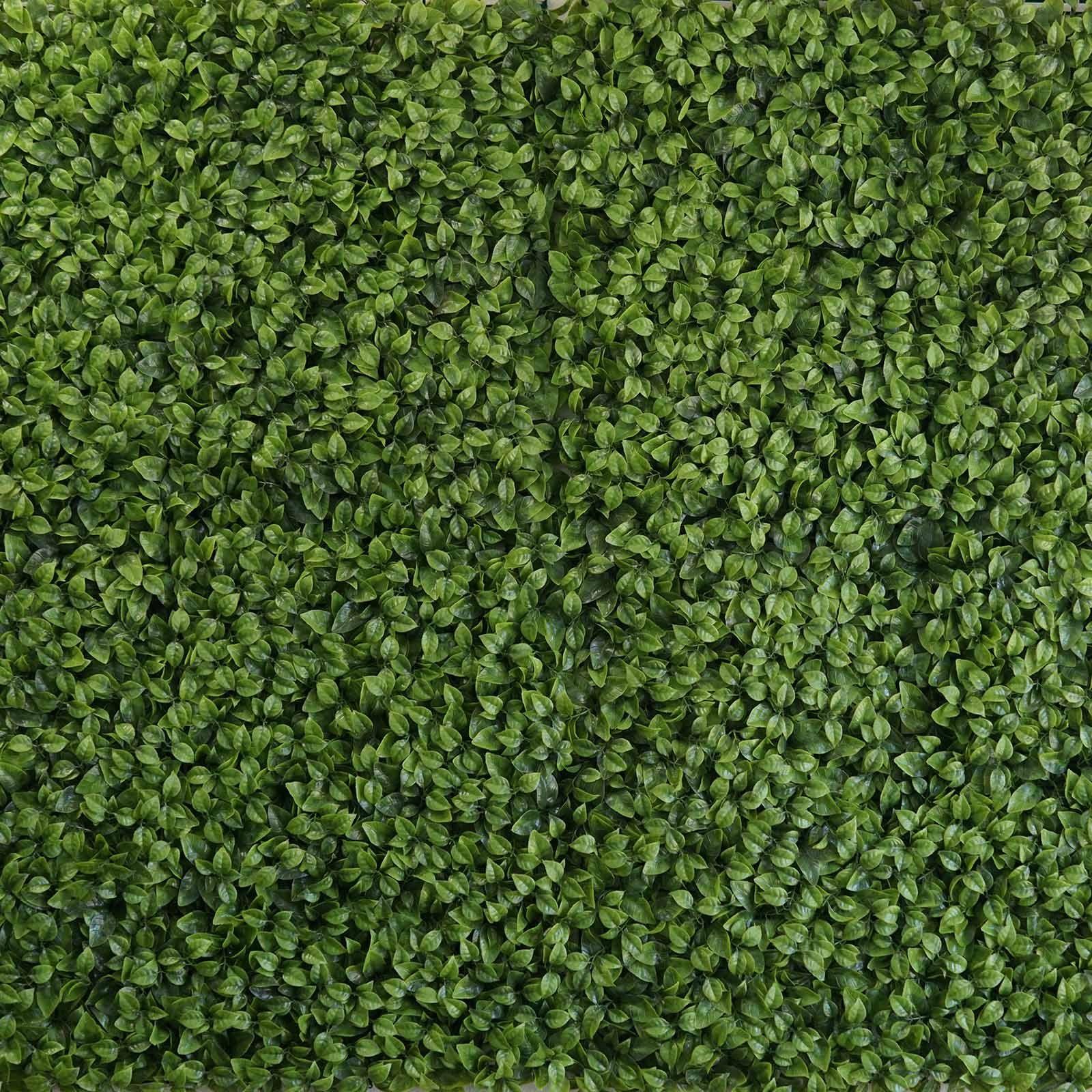 Purple Green Artificial Boxwood Hedge Elliptical Leaves Foliage Wall 4 Panels