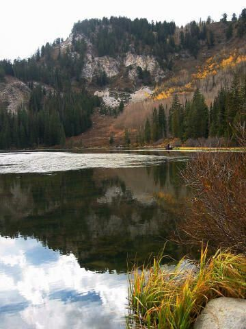 Learn To Fish It's Fun! Best hikes, Cottonwood canyon