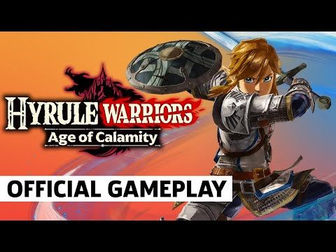 Pin By Urbosa On The Legend Of Zelda Hyrule Warriors Calamity Video Game Companies