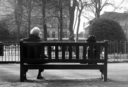 Lonely On Park Bench An Old Man Sits With His Dog On A Park Bench