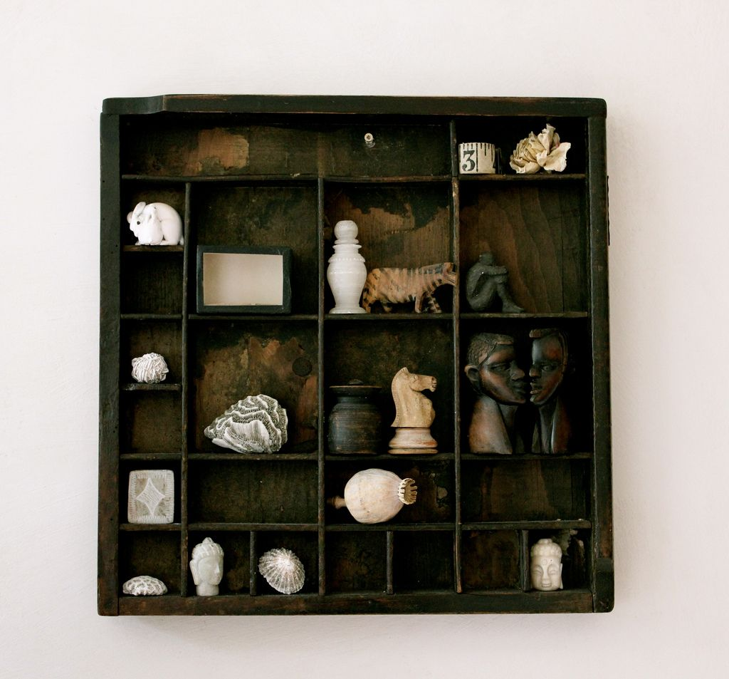 Seashells Displaying Collections Small Collectibles Shadow Boxes