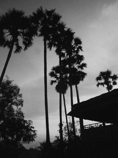 Cambodja ❤