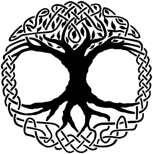Tree of life is the symbol of an entity which connects the upper and