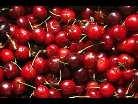 HomeHack: The BEST Way to Pit Cherries! - YouTube | Food