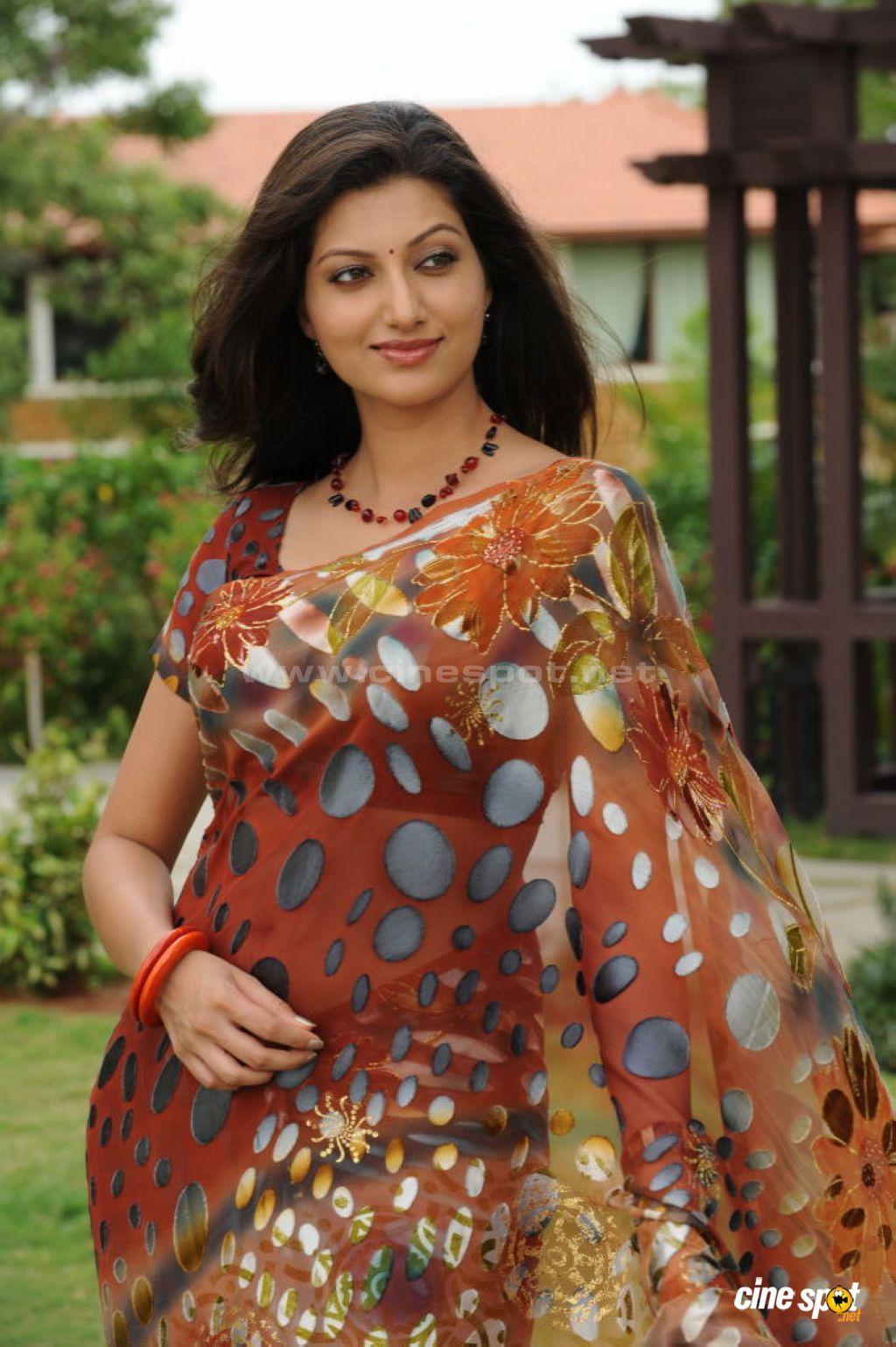 Indian Actress In Saree Collection Hamsa Nandini Malayalam Tv