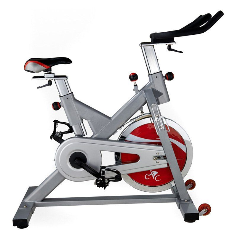 Sunny Health & Fitness SF-B1110S Pro Indoor Cycling Bike - Silver - SF-B1110S
