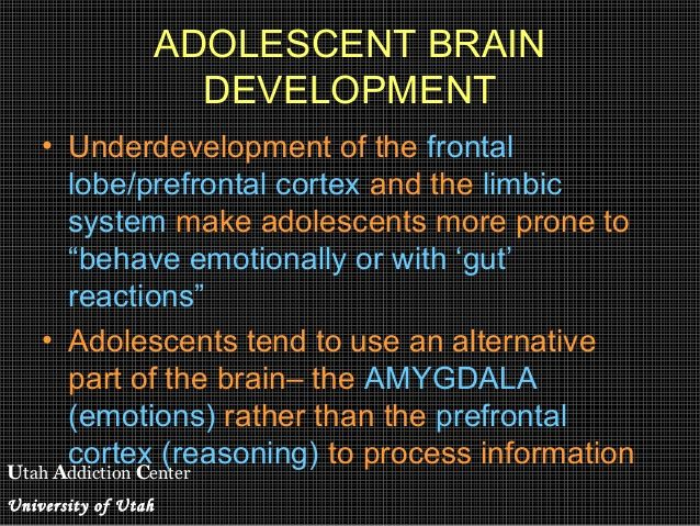 utah addiction center university of utah adolescent brain  utah addiction center university of utah adolescent brain development • underdevelopment of the frontal lobe