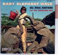 """Hatari! """"Baby Elephant Walk"""" is a piece of music written in 1961 by  composer Henry Mancini, for the 1962 release…   Baby elephant walk, Music  writing, Elephant walk"""