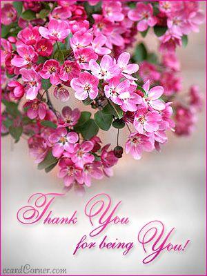 Thank you beautiful messages pinterest lgbt and thankful thankful thank you birthday greetingsfriendshipimagelgbtthankfulinspiring m4hsunfo
