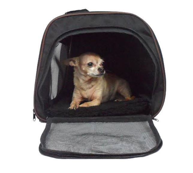 Southwest Airlines Pet Carrier Airport Air Travel Airline Approved Medium Dogs Pawperfectpet Airline Approved Pet Carrier Cat Carrier Pet Carriers