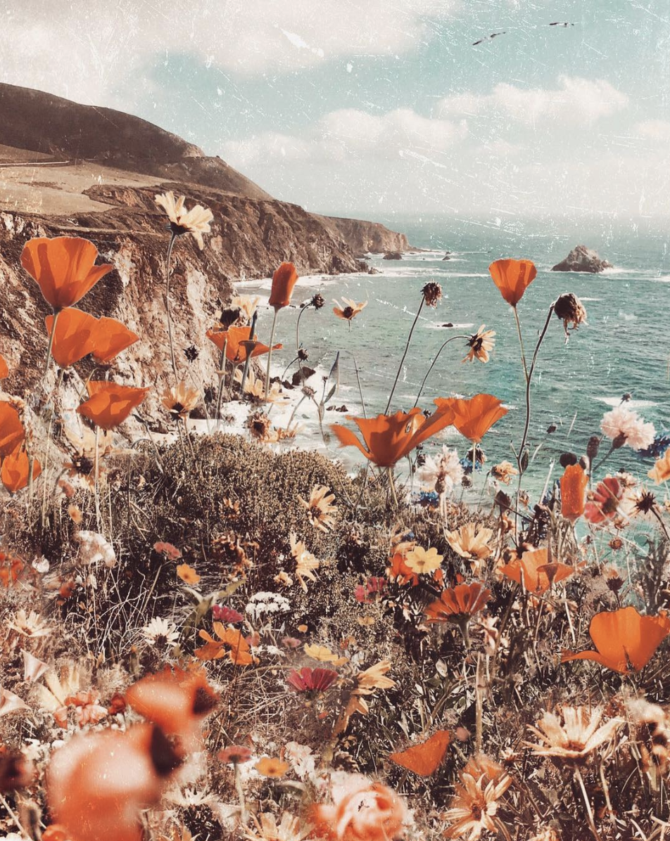 INSPIRATION 63 / SUPER BLOOM  — Weekend Creative