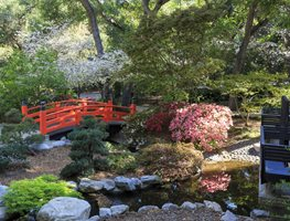 Best Botanical Gardens In The Us