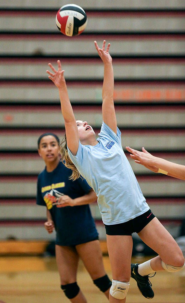 Q A With Mountlake Terrace Volleyball Player Sophie Parsons Heraldnet Com Volleyball Players Soccer Players Players