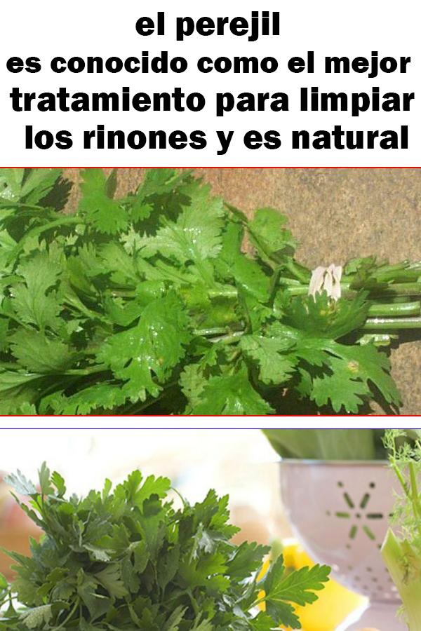 Remedio natural para limpiar los rinones con perejil