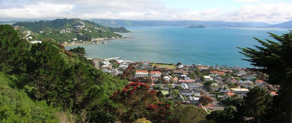 Wellington harbor New Zealand