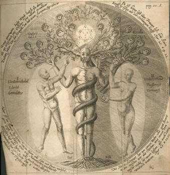 Resultado de imagen para jacob boehme mysterium magnum