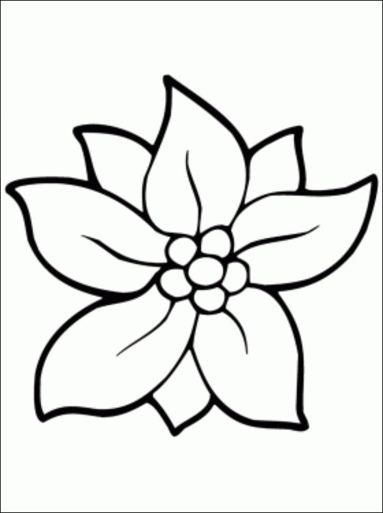 Christmas Flower Coloring Page Coloring Pages Flower Coloring Sheets Easy Coloring Pages Printable Flower Coloring Pages