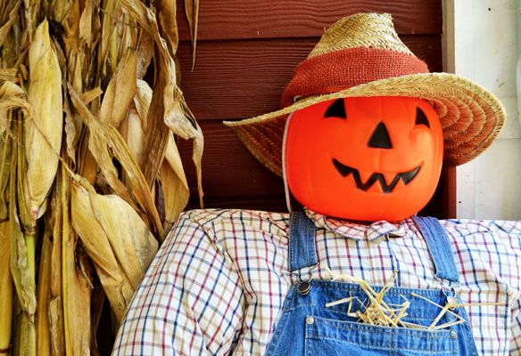 How to Build a Scarecrow for Your Fall Front Porch Scarecrows - halloween club decorations