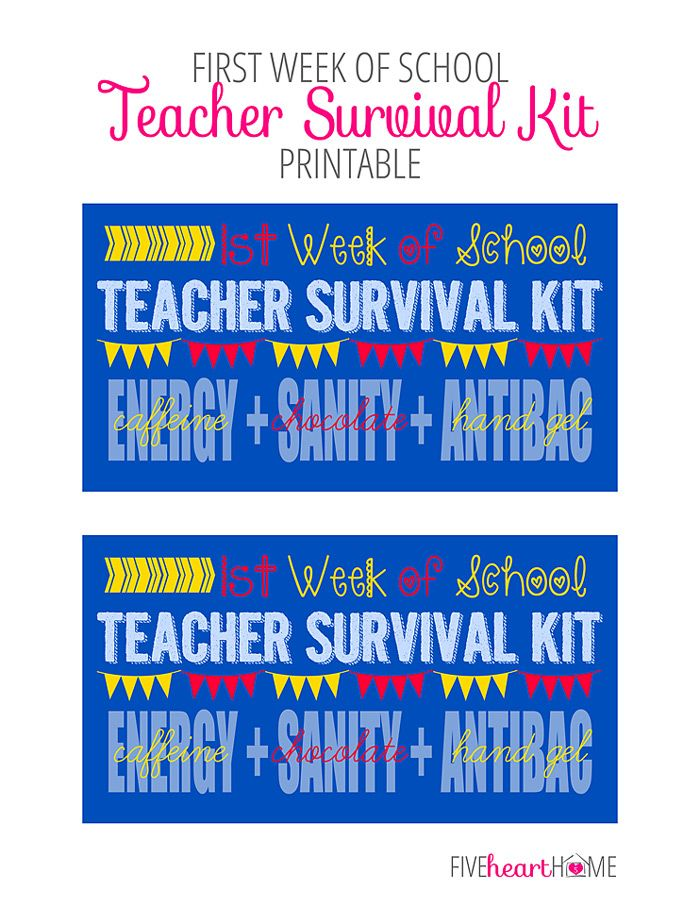 Survival skill for teachers in their