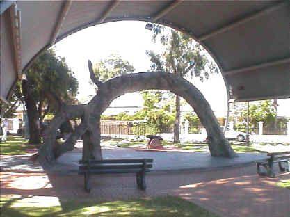 The Old Gum Tree At Glenelg North South Australia Adelaide S Best Australia Tourism South Australia Australia Living