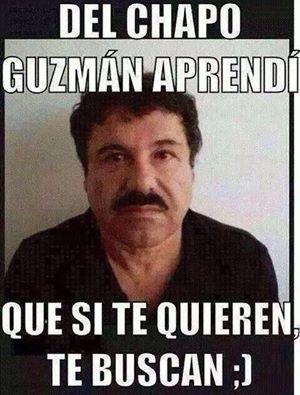 Del Chapo Guzmán Aprendí Que Si Te Quieren Te Buscan Pensamientos