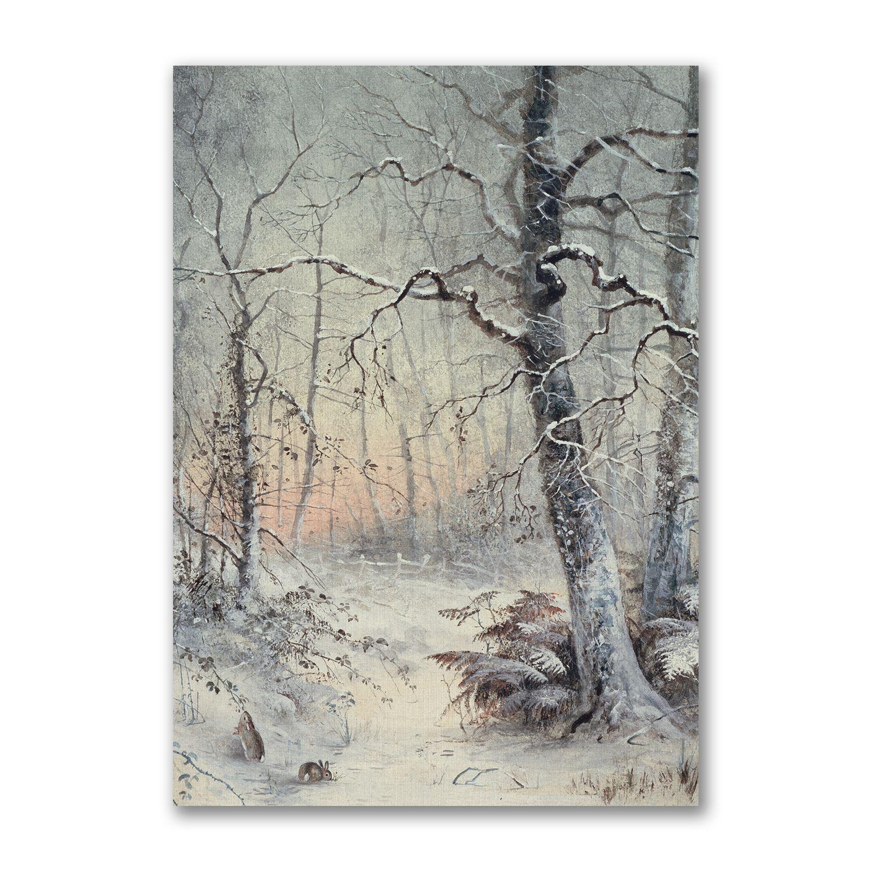 Nature Christmas Cards 6 Nature Xmas Cards Josie Shenoy