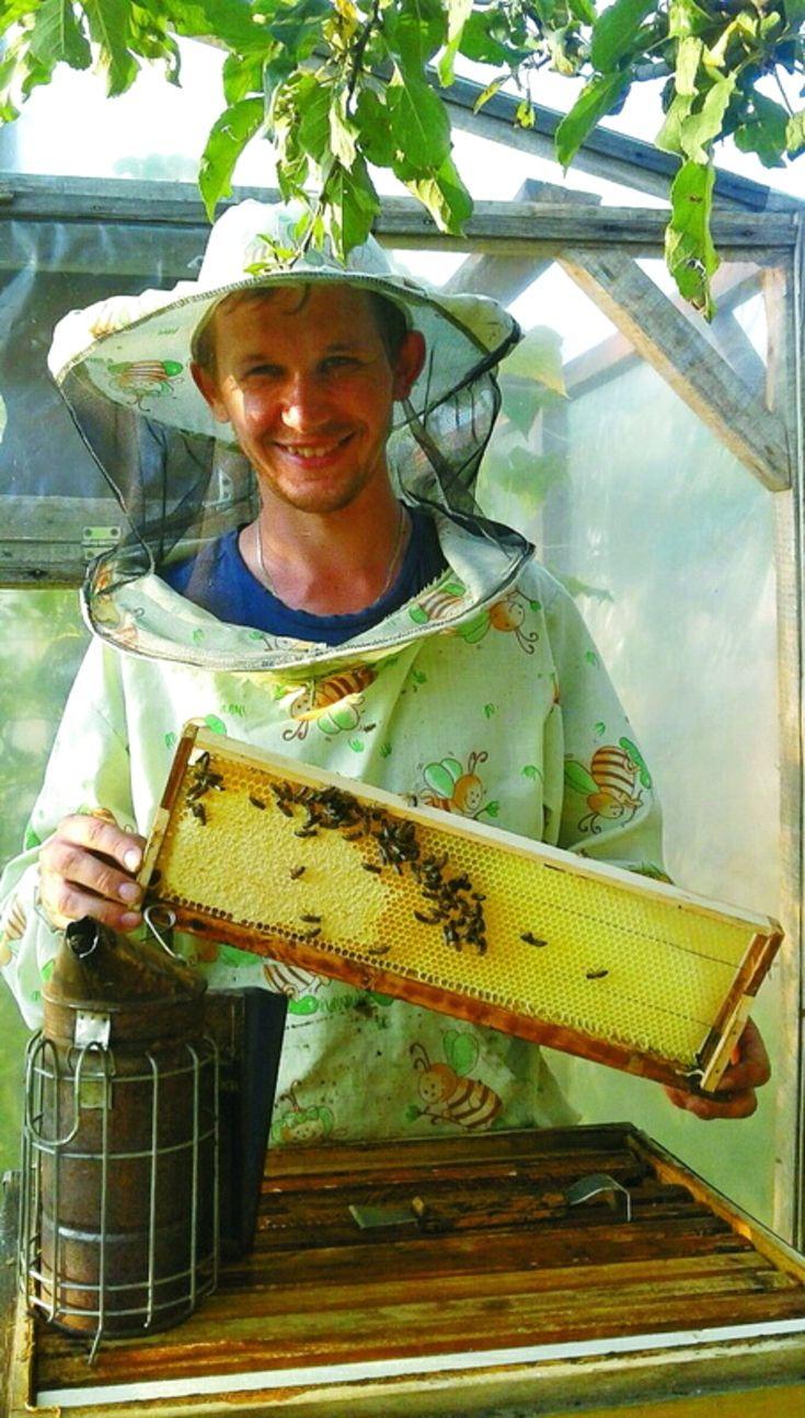 Молодий бджоляр доглядає 50 вуликів. Жителю смт Недригайлова Юрію  Шаповалову важко уявити життя без бджіл 35ca6670df8c0