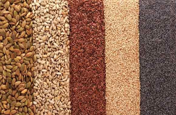 Las Semillas Beneficios Y Maneras De Consumirlas Fitnatura Semillas Comestibles Alimentos Semillas