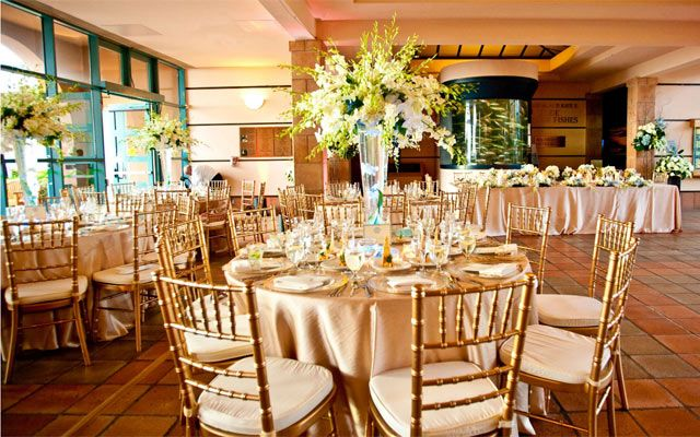 Unique San Diego Wedding Venues Exquisite Weddings San Antonio Wedding Venues San Diego Wedding Venues La Wedding Venues