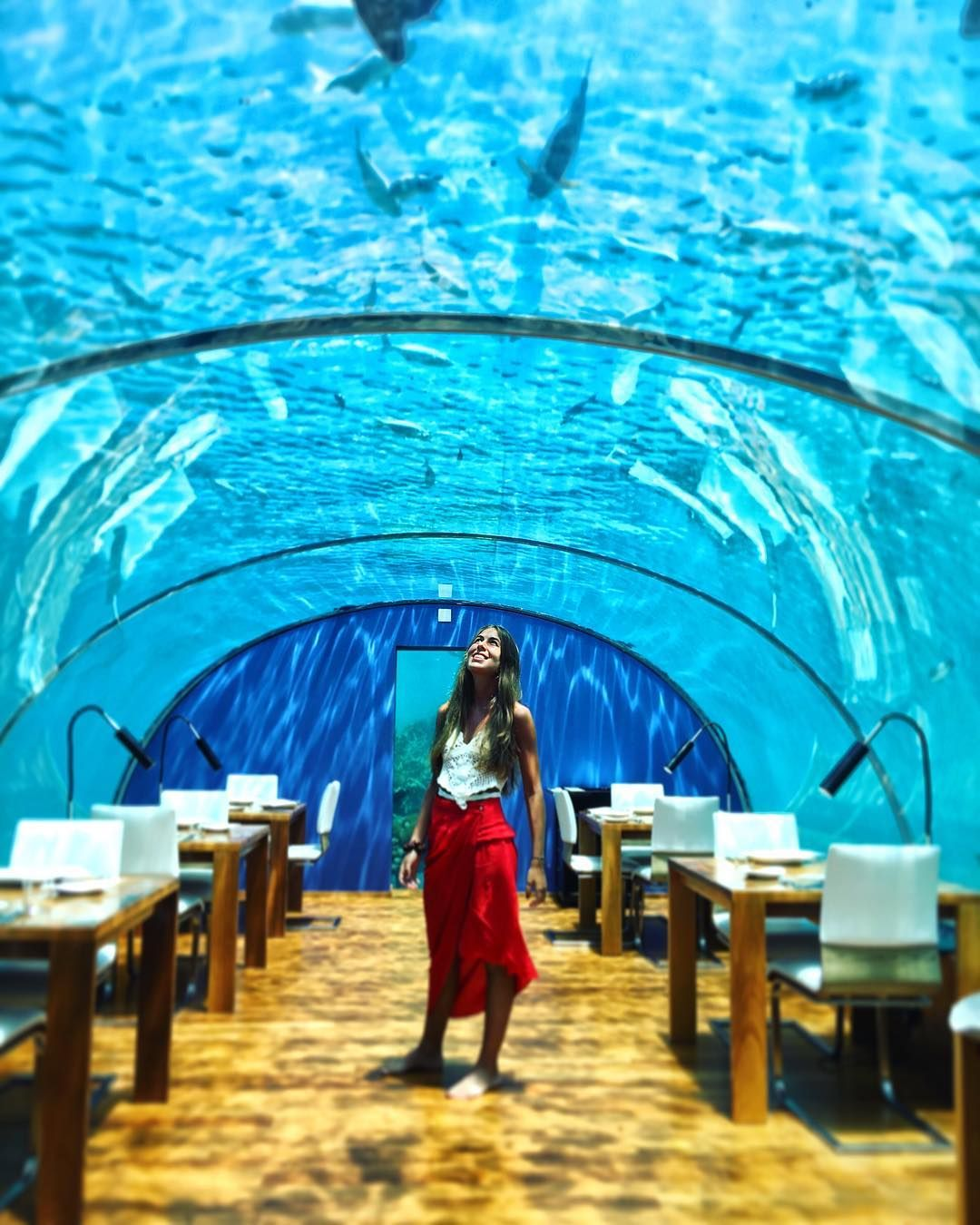 Romantic Places In The World To Visit: Ithaa Undersea Restaurant, Maldives