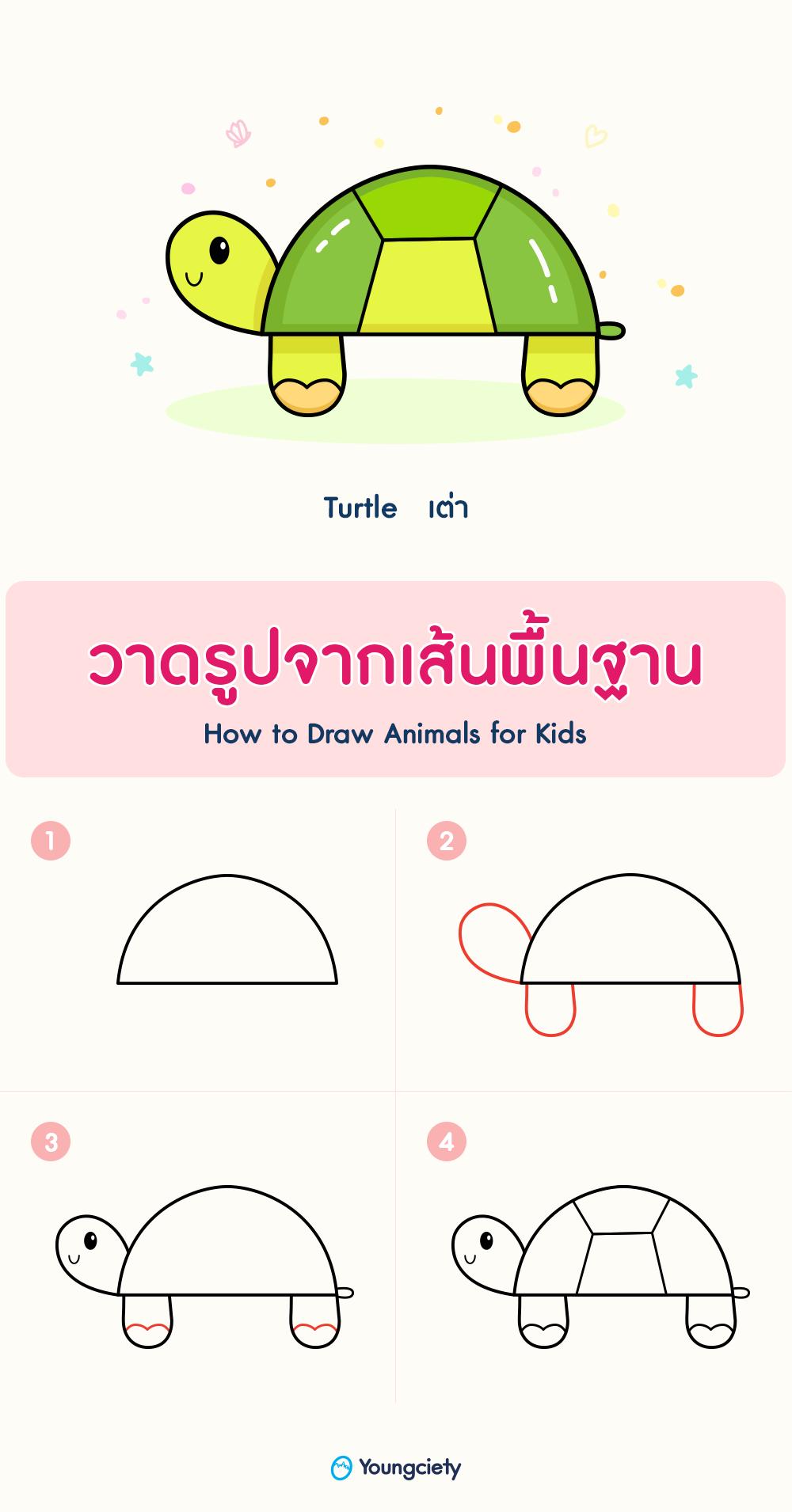 สอนวาดร ปเต าง าย ๆ How To Draw A Turtle สอนศ ลปะ สอนวาดร ป ส ตว น าร ก