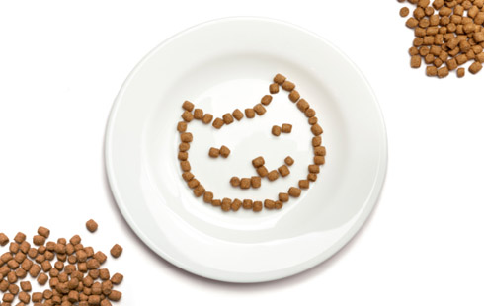 How to Make Your Own Cat Treats at Home