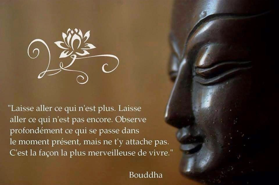 Instant Par Instant Paroles De Bouddha Bouddha Citation Citation