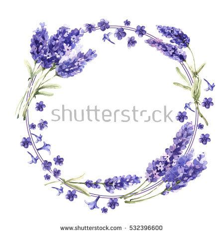 Wildflower Lavender Flower Wreath In A Watercolor Style Isolated Full Name Of The Plant Lavender Aquarell Wreath Watercolor Watercolor Flowers Flower Wreath