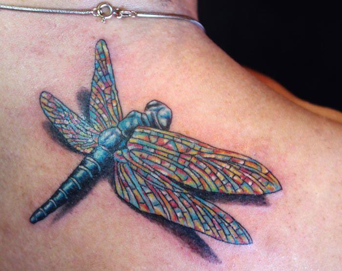 Celtic Dragonfly Tattoos Dragonfly Tattoos For Women Tattoos