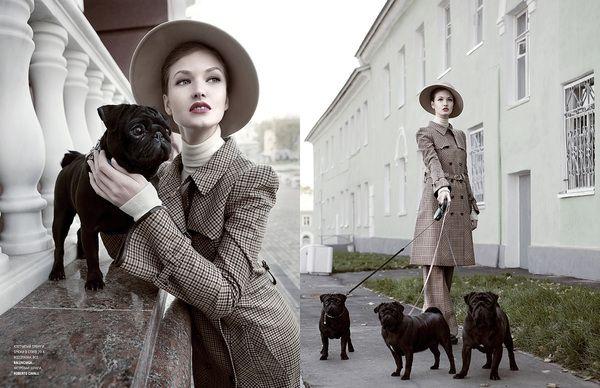 pug high fashion