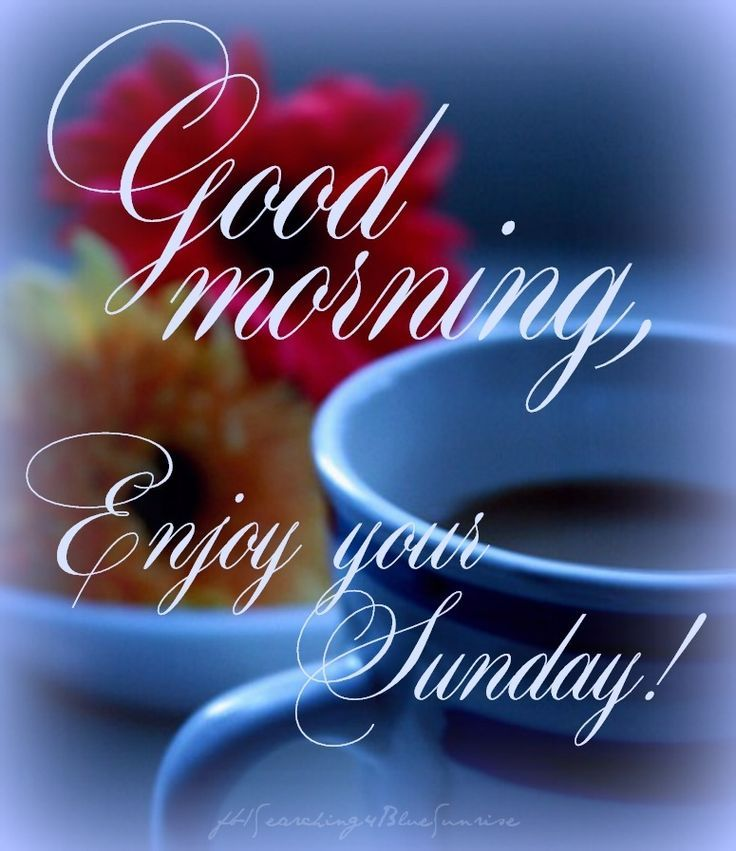 Good Morning Wishes On Sunday Pictures Images