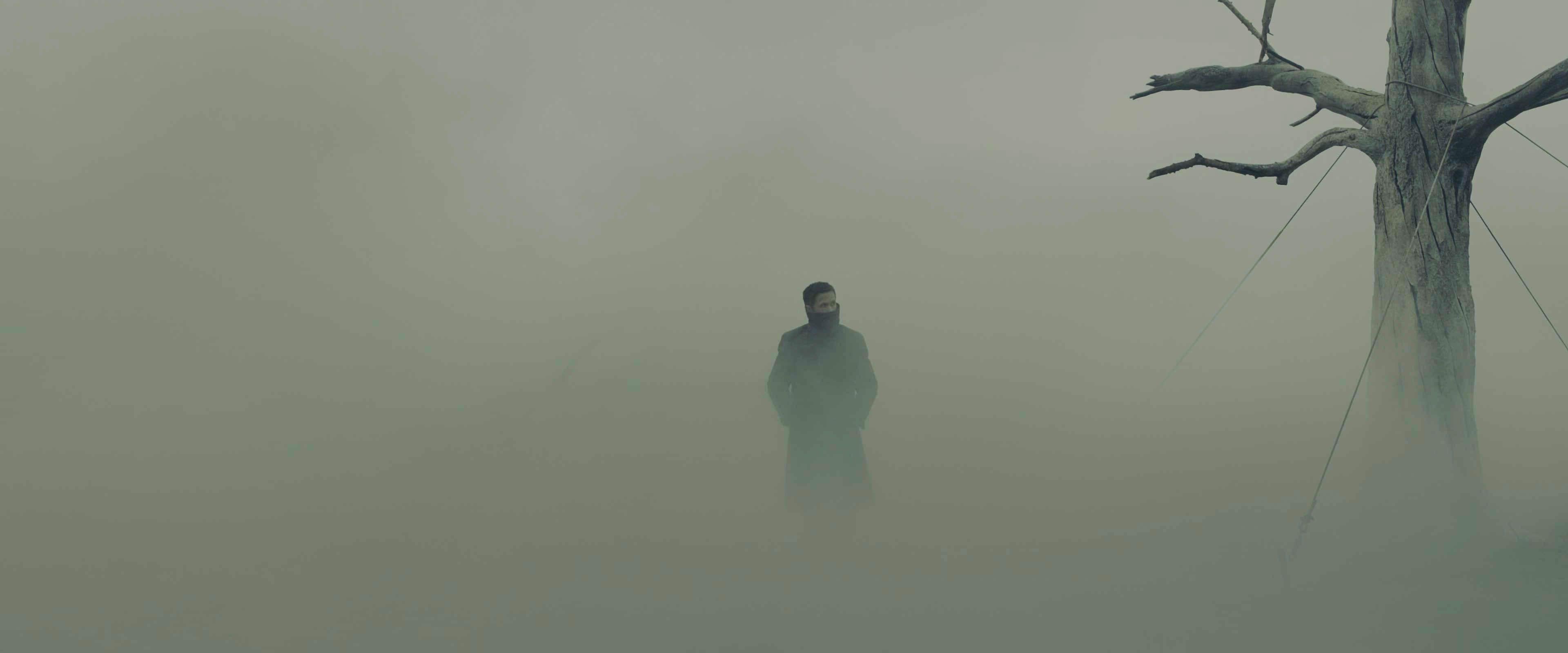 270 Blade Runner 2049 4k Screen Shots Frame Captures Luke Dowding On The Web Blade Runner 2049 Blade Runner Cyberpunk Aesthetic