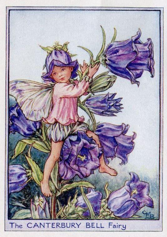 Торт, цветочные феи открытки