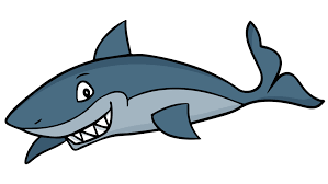 Image Result For Cute Shark Animation Shark Drawing Shark Cartoon
