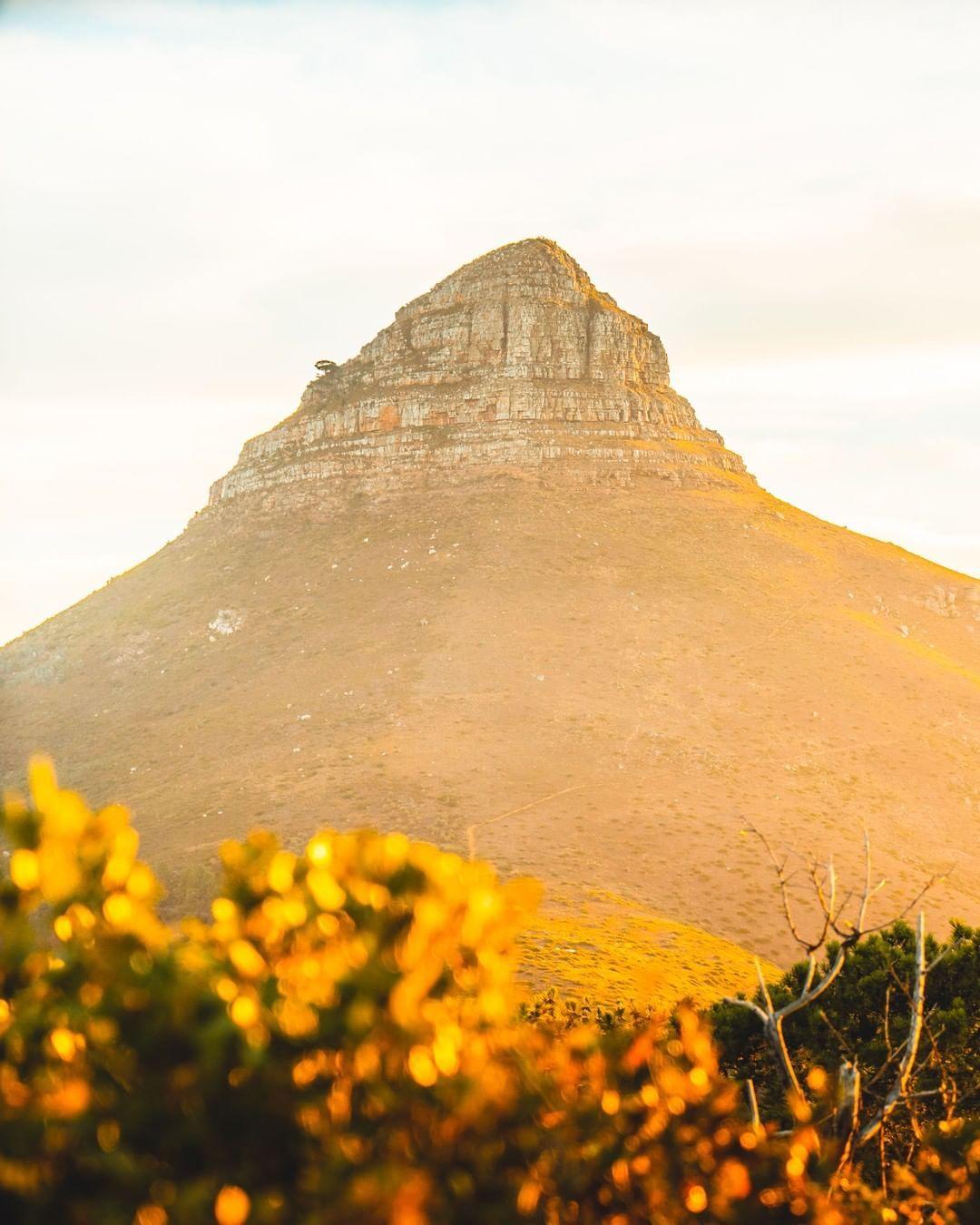 Kapstadt Fotospots Die Top 10 Locations Fur Deinen Kapstadt Urlaub Kapstadt Urlaub Urlaub Finden Sudafrika Urlaub