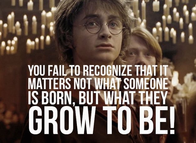 Harry Potter And The Goblet Of Fire 23 Incredible Quotes From Your Favorite Books That Hit The Big Screen Popular Quotes Incredible Quote Most Popular Quotes