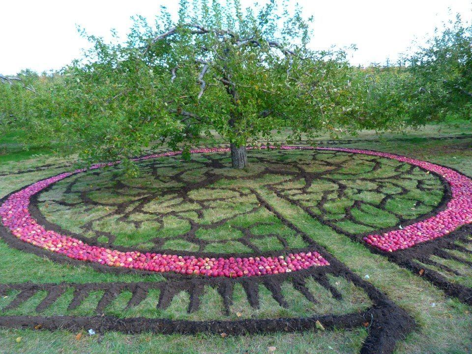 Saint Hilaire Quebec Outdoor Decor Apple Tree Outdoor